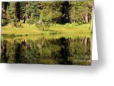 Green In Summit Lake Greeting Card