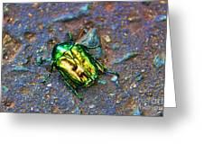 Green Junebug Greeting Card