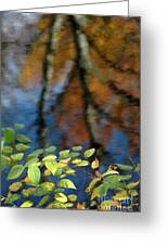 Green Leaves And Autumn Reflection Greeting Card