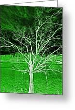 Green Magic Tree Greeting Card