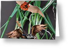 Green Onions Greeting Card