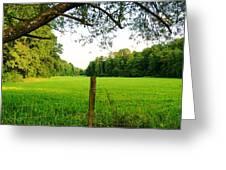 Green Pasture Greeting Card