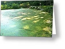Green Pond Greeting Card