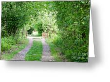 Green Road Greeting Card