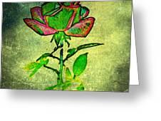 Green Rose Greeting Card