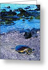 Green Sea Turtle Honu Greeting Card