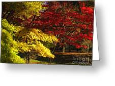 Green Yellow Red Greeting Card