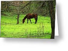 Greener Grass Greeting Card