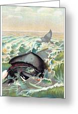 Greenland Whale Greeting Card