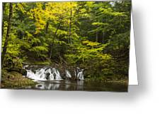 Greenstone Falls 4 Greeting Card