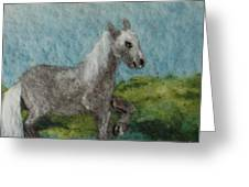 Grey Horse Greeting Card by Nicole Besack