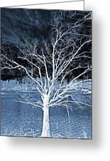 Grey Magical Tree Greeting Card