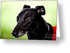 Greyhound Greeting Card by The DigArtisT