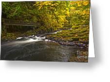 Grist Mill Creek Greeting Card