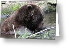 Grizzley - 0006 Greeting Card