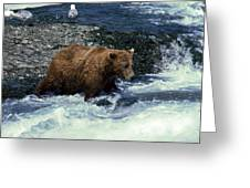 Grizzly Bear Fishing Greeting Card