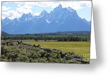 Grizzly Country Greeting Card