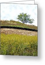 Growing Above The Stone Fence Greeting Card