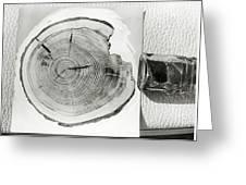 Growth Rings On A Tree From Tunguska Greeting Card