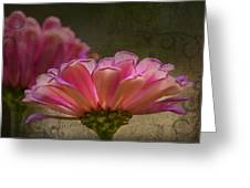 Grungey Pink Zinnia Delight Greeting Card