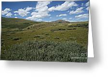 Guanella Pass Slopes Greeting Card by Michael Kirsh