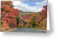 Guardsman Pass To Midway In The Fall - Utah Greeting Card