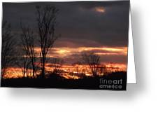 Guilded Sunset Greeting Card