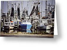Gulf Boats Greeting Card