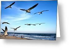 Gulls Greeting Card by John Loreaux