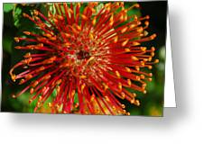 Gum Flower Greeting Card