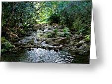 Haiku Stream Greeting Card