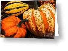 Halloween Colors Greeting Card