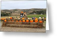 Halloween Pumpkin Patch 7d8478 Greeting Card