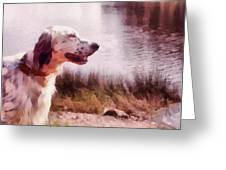 Handsome Hunter. English Setter Greeting Card