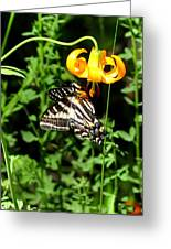 Hanging On Greeting Card by Scott Gould
