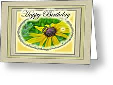 Happy Birthday Card    Black-eyed Susan And Bee Greeting Card