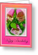 Happy Birthday Card - Foxgloves Greeting Card