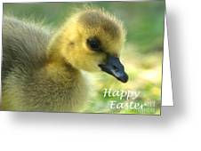 Happy Easter Gosling Greeting Card