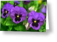 Happy Faces Purple Pansies Greeting Card