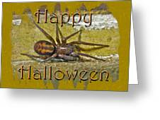Happy Halloween Spider Greeting Card Greeting Card