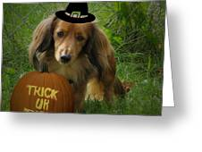 Happy Halloween Greeting Card by Victoria Sheldon