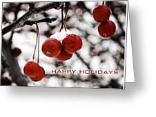 Happy Holidays Berries Greeting Card
