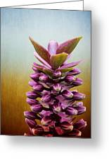 Happy Purple Pods Greeting Card by Michael Taggart