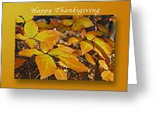 Happy Thanksgiving Beech Leaves Greeting Card