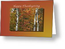 Happy Thanksgiving Birch And Maple Trees Greeting Card
