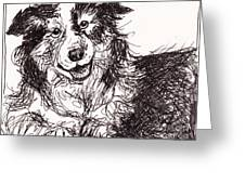 Happy The Boarder Collie Greeting Card