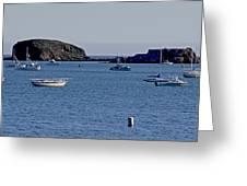 Harbor On The California Coast Greeting Card