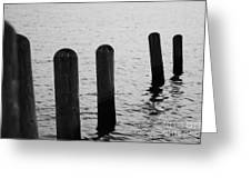 Harbor Ties Greeting Card