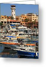 Harbor Waterfront In Cabo San Lucas Greeting Card