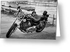 Harley Black And White Greeting Card by Dean Bennett